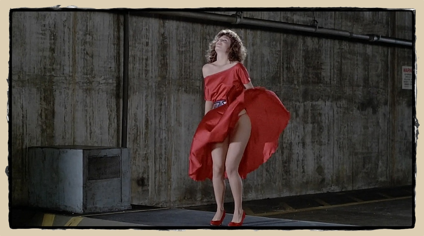 The Woman in Red (1984) Kelly LeBrock