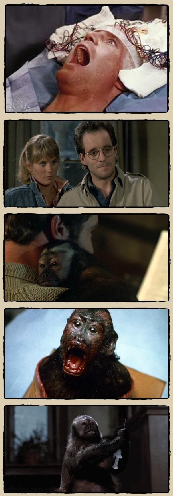Monkey_shines_
